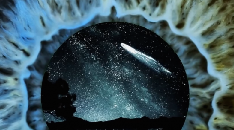 are comets source of life on earth