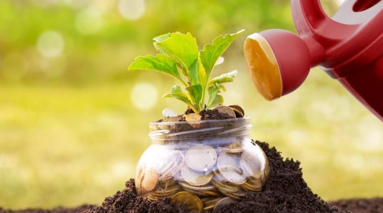 garden-investment